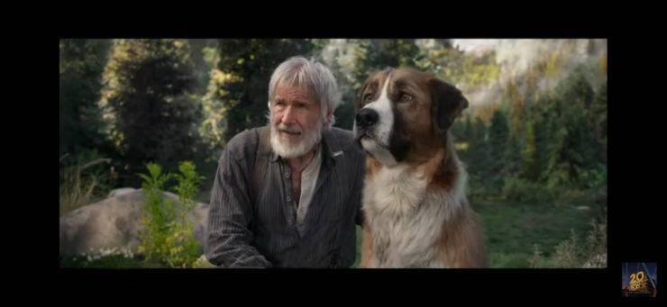Il richiamo della foresta, Buck e Thornton