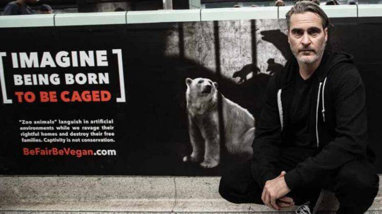 Joaquin Phoenix orso animali