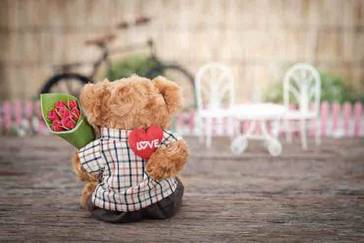regali per amanti dei cani a san valentino