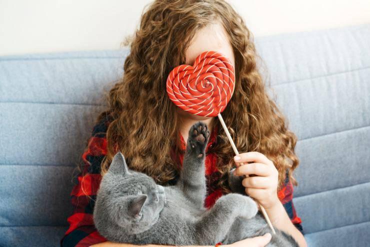 San Valentino con il gatto