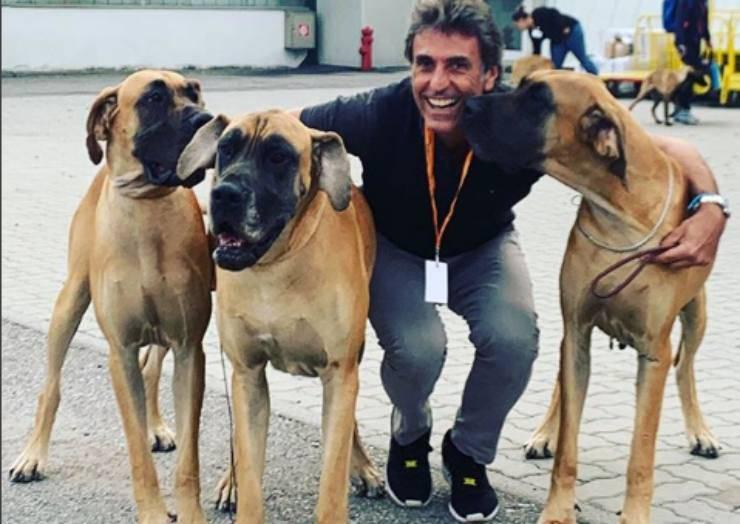 iniziativa cani bisognosi