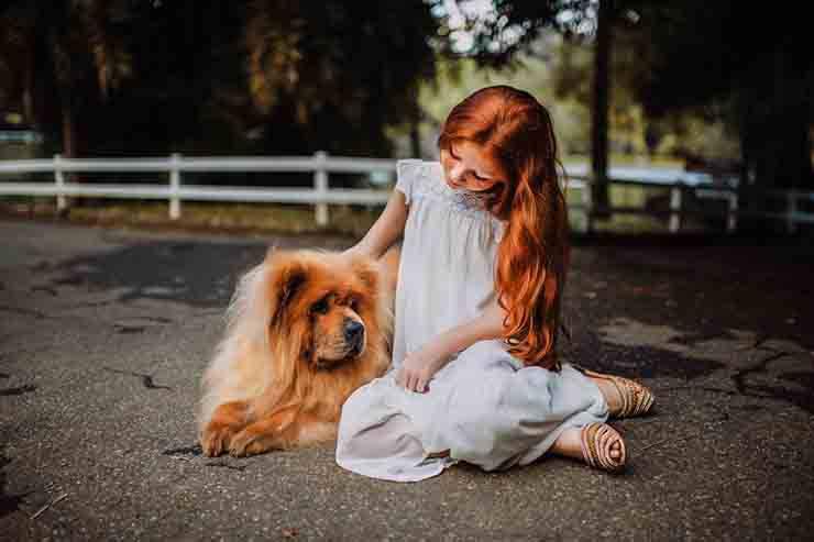 bambina accarezza cane