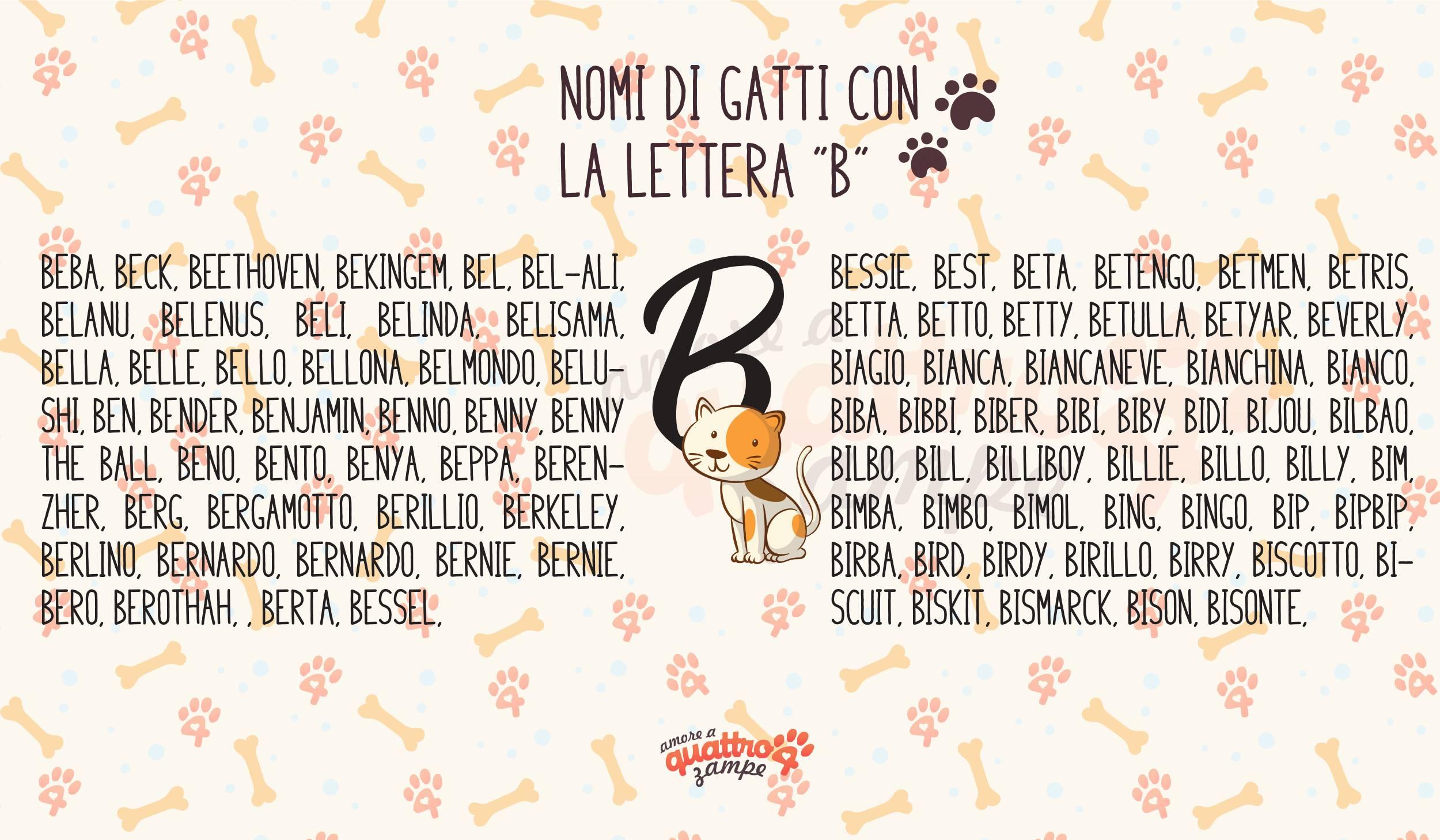 Infografica nomi gatti con la B