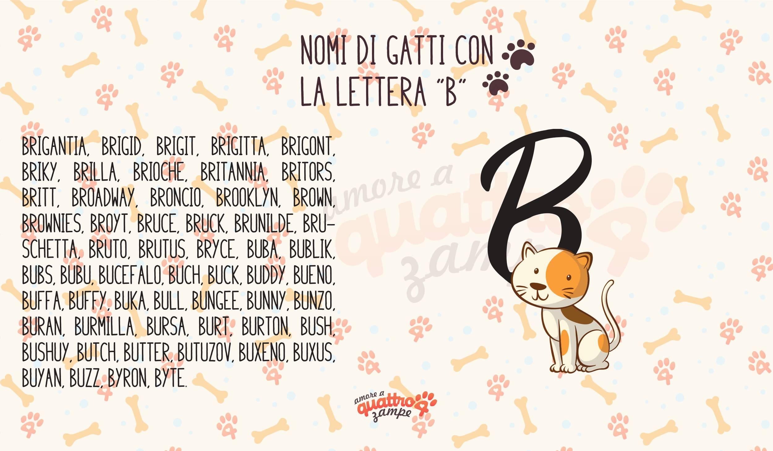 infografica lettera B nomi gatti