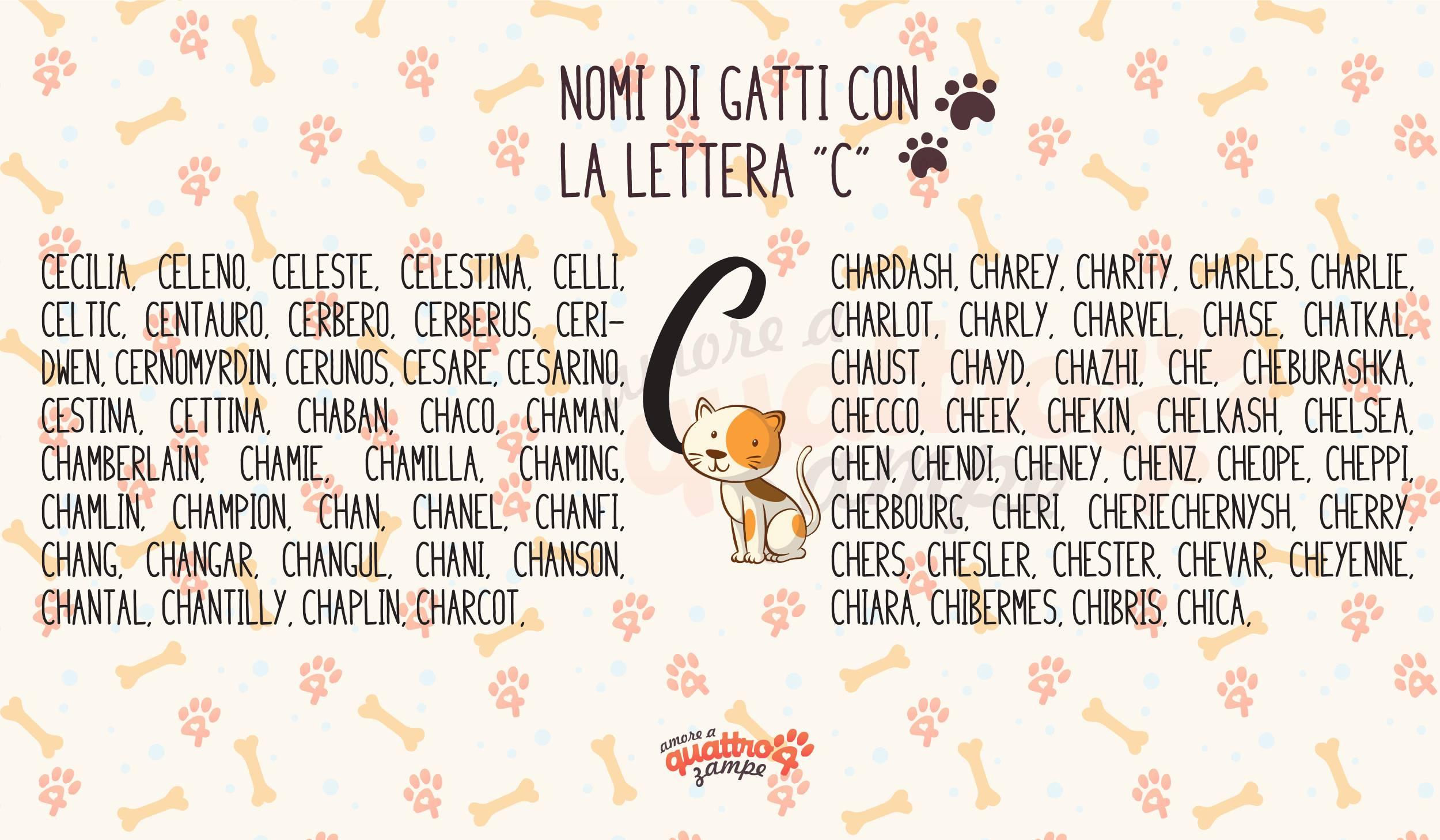 Infografica nomi gatti con la C