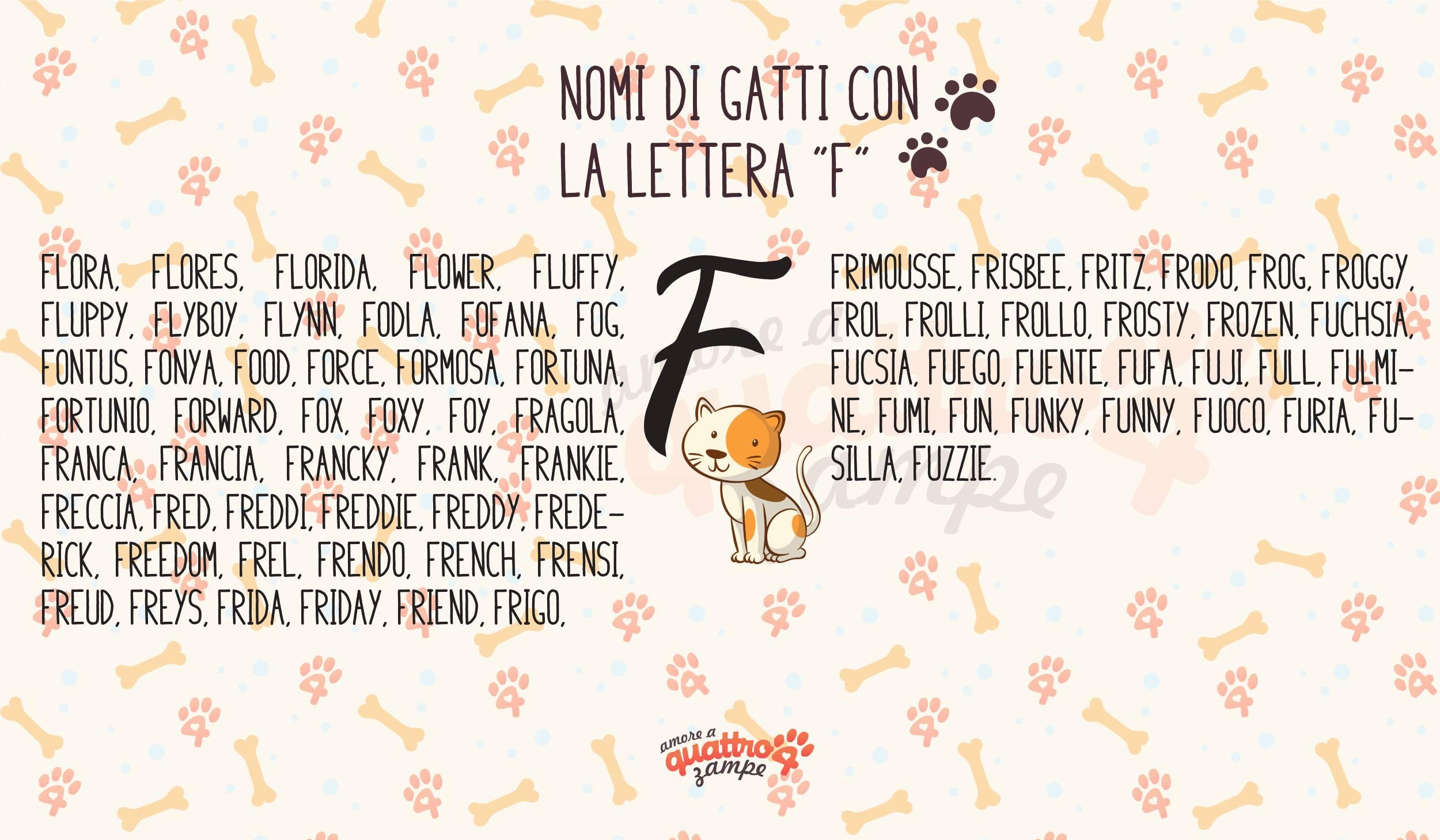 Infografica nomi gatti con la F