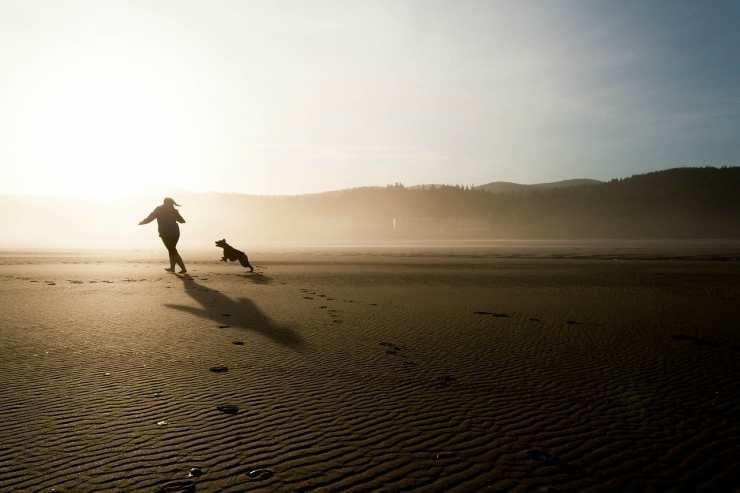Il cane che corre felice con la sua padrona (Foto Pixabay)