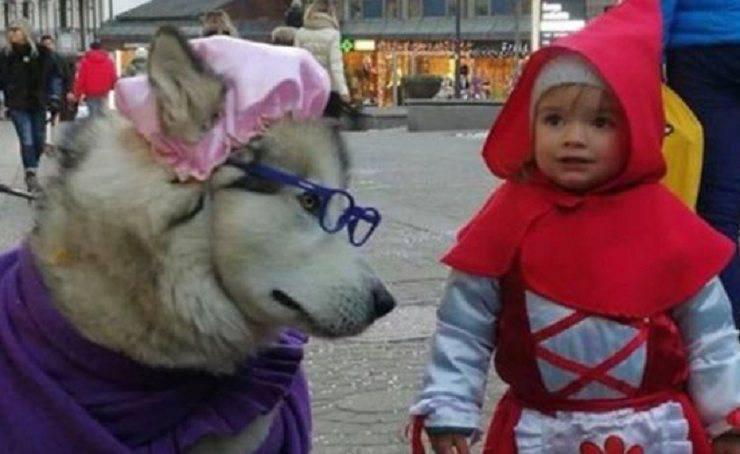 cane carnevale bambini