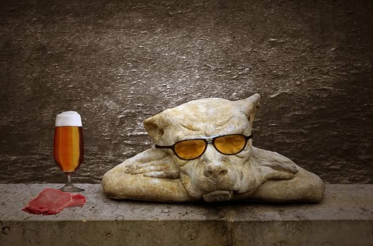 Cani e birra
