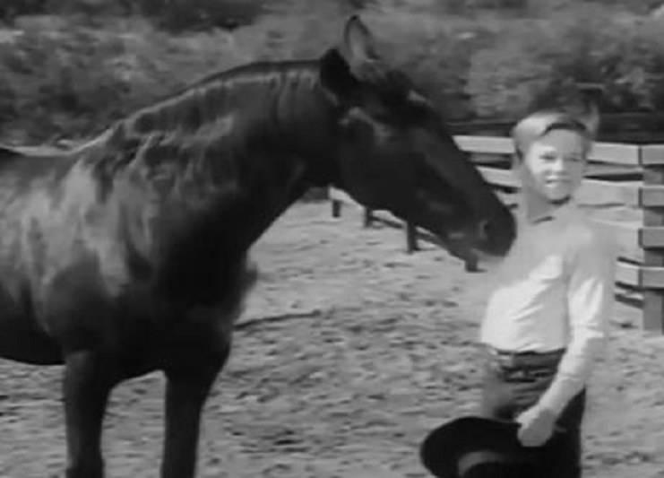 furia cavallo