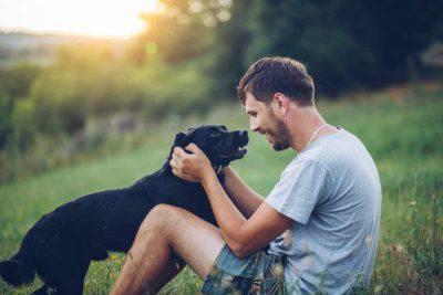 Coronavirus, svolta in Cina: vietato mangiare cani e gatti