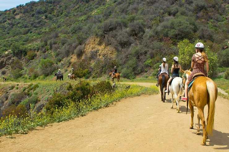 preparare cavallo passeggiata