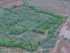 Gli ettari di terreno della coppia (Foto video)