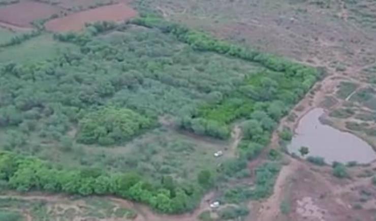 la vasta distesa di terreno (Foto video)