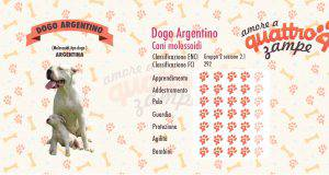 dogo argentino scheda razza