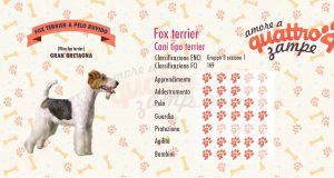 Fox terrier scheda razza