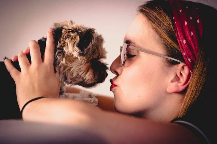 baciare cane