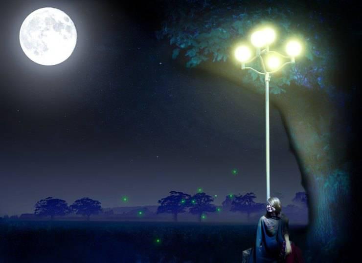 lucciole lampione
