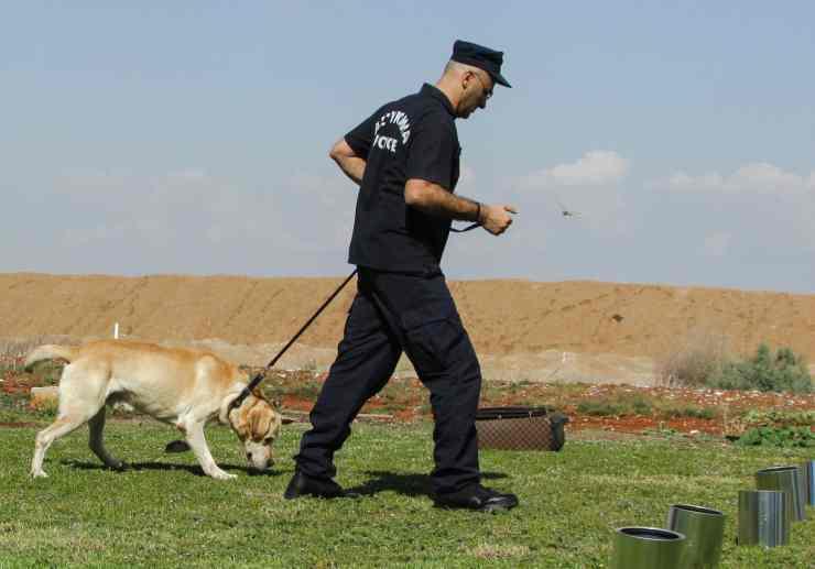cane poliziotto all'azione (Foto Pixabay)