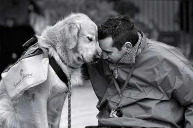 Uomo e cane, un legame empatico Facebook