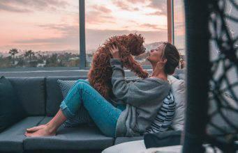 insegnare al cane a dare baci