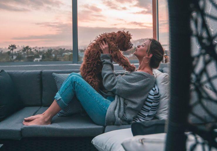 baci del cane