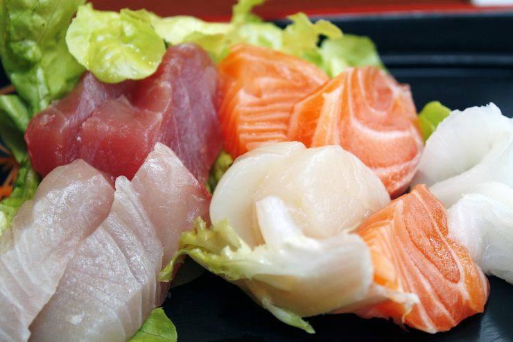 Mangime per pesci carnivori