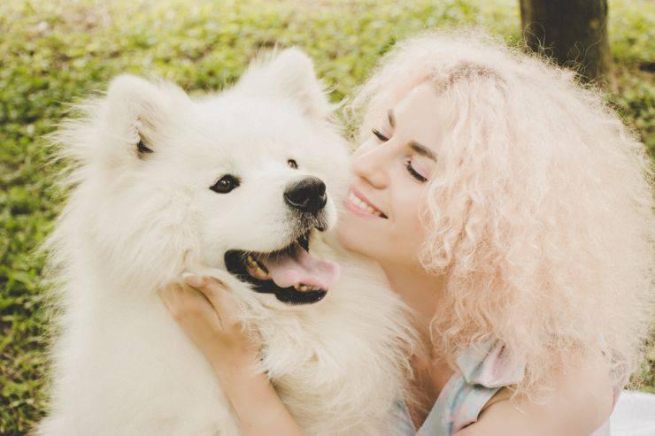trattamenti di bellezza cane