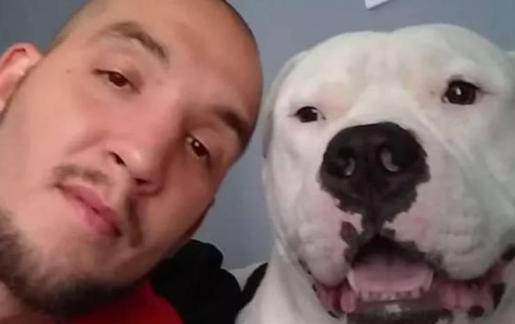 vendita auto salvare cane