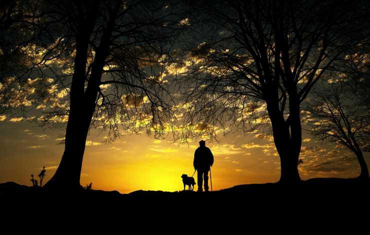 Cane e proprietario al tramonto (Foto Pixabay)