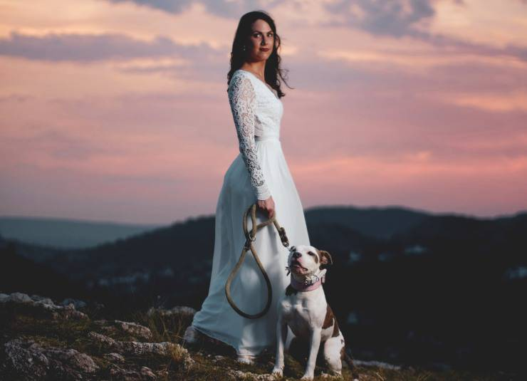 matrimonio col cane