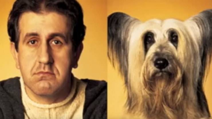 animali somiglianti ai padroni