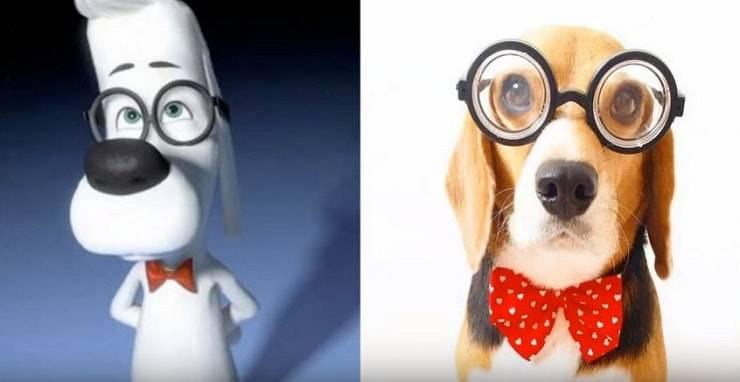 Cani dei cartoni animati nella realtà