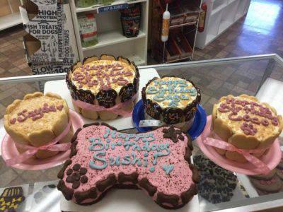 dolci torte cani