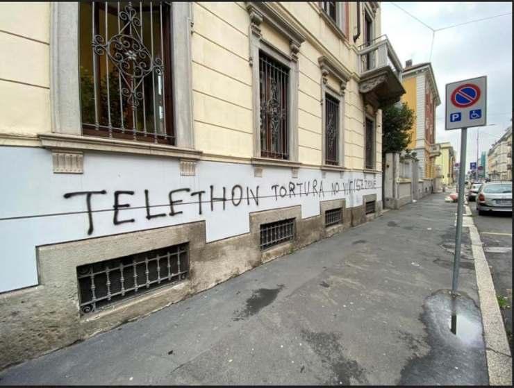 scritta vandalica sede Telethon animalisti