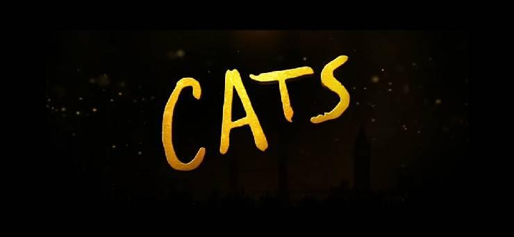 Cats al cinema