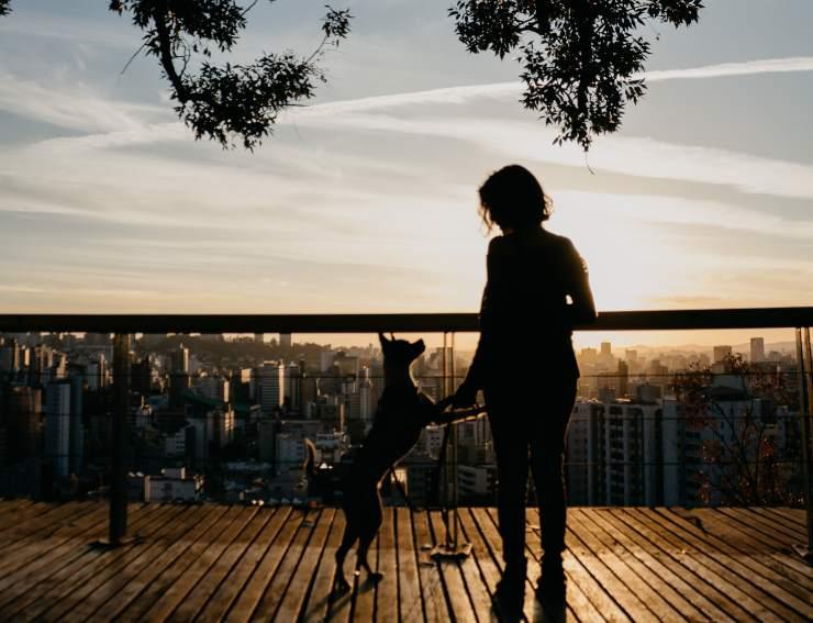 Come allenarsi con il cane