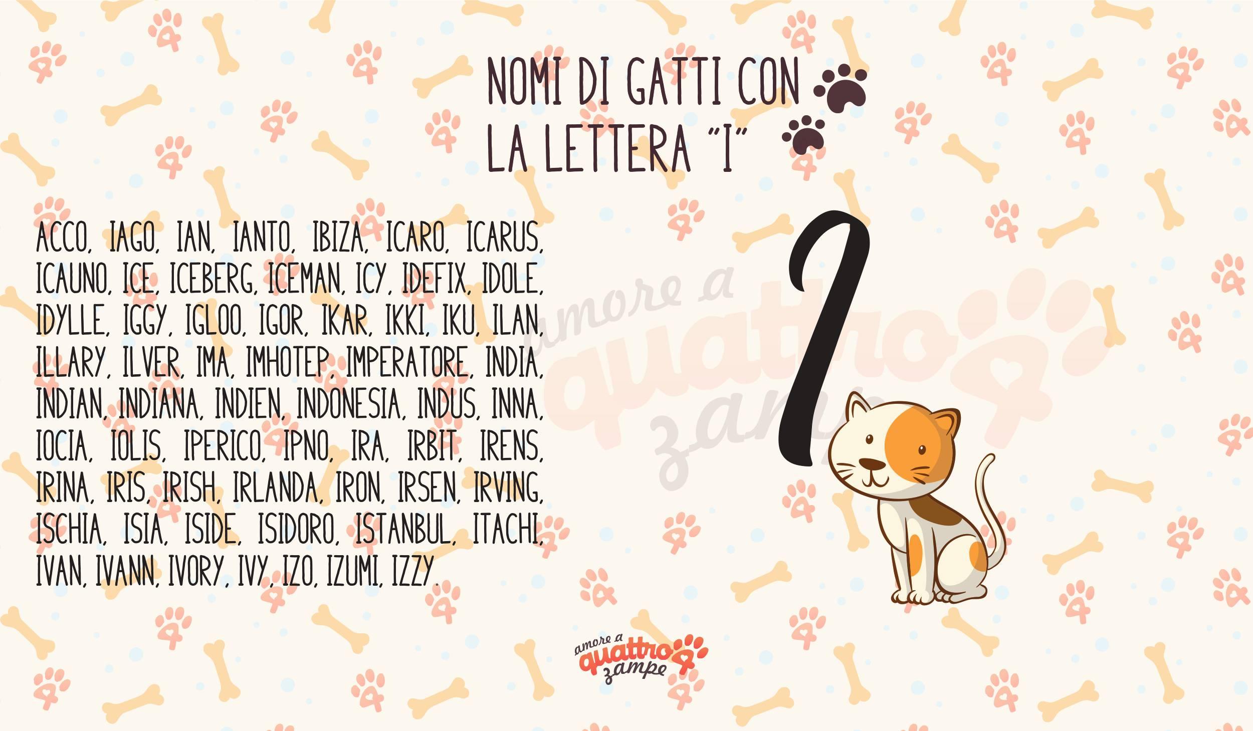 Infografica nomi gatti con la I