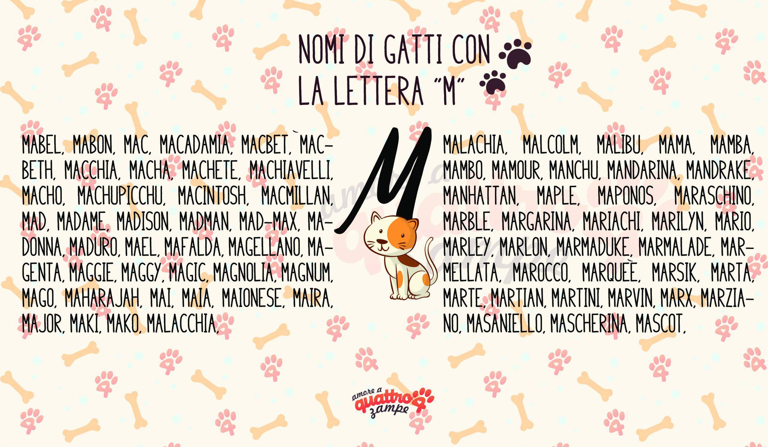 Infografica nomi gatti con la M