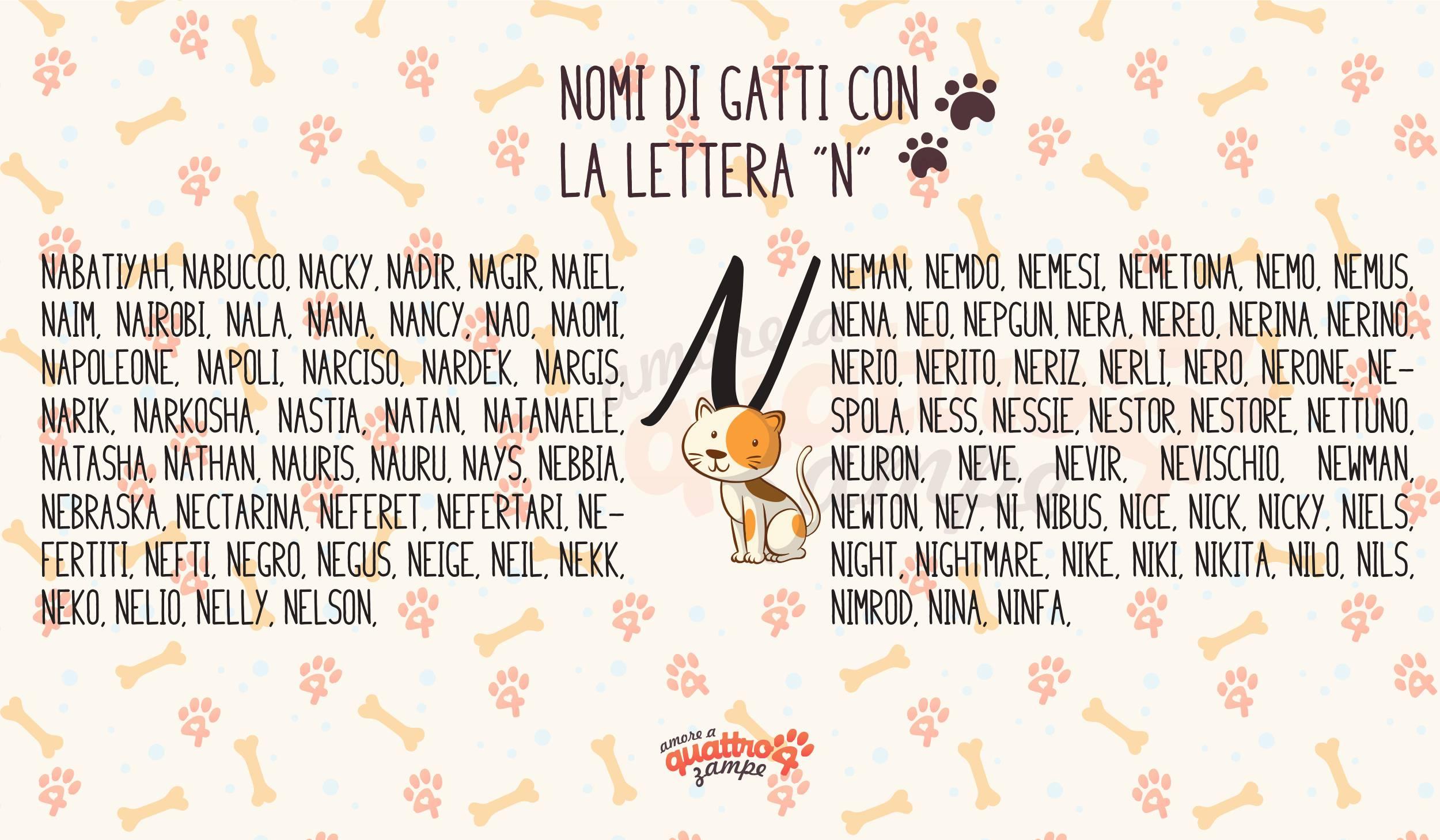 Infografica nomi gatti con la N