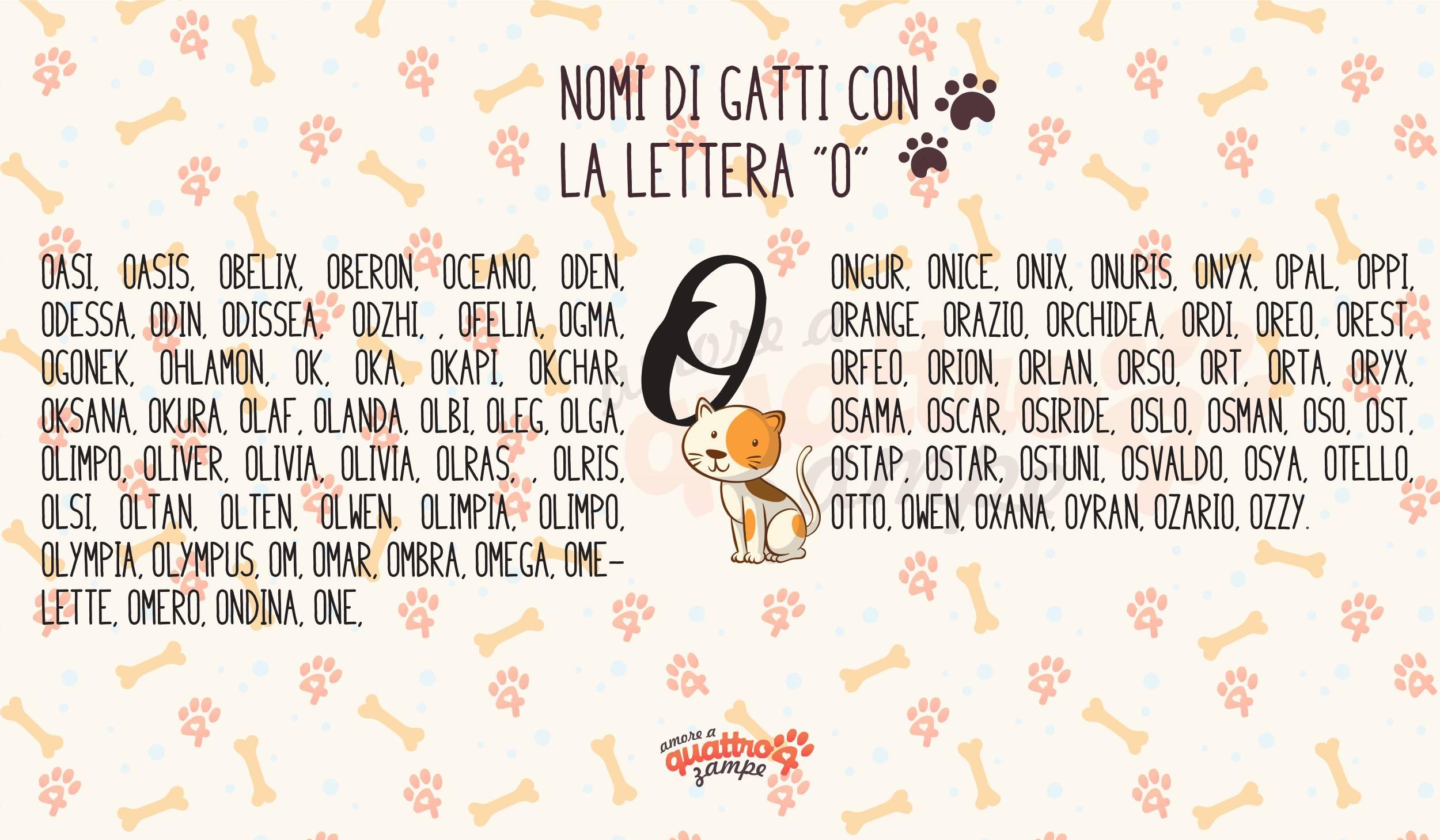 Infografica nomi gatti con la O