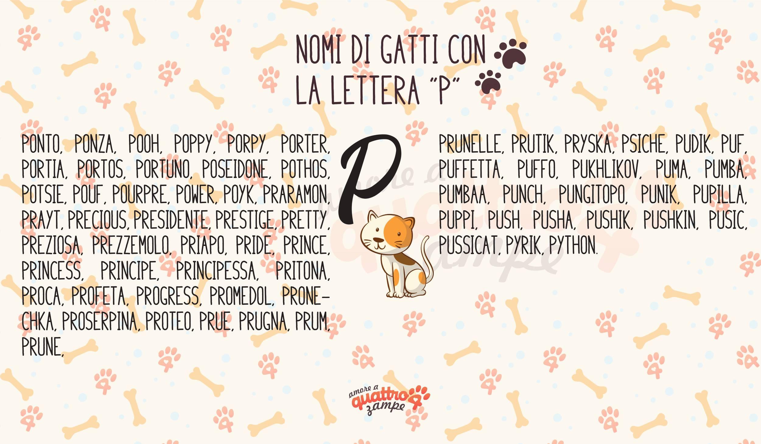 Infografica nomi gatti con la P