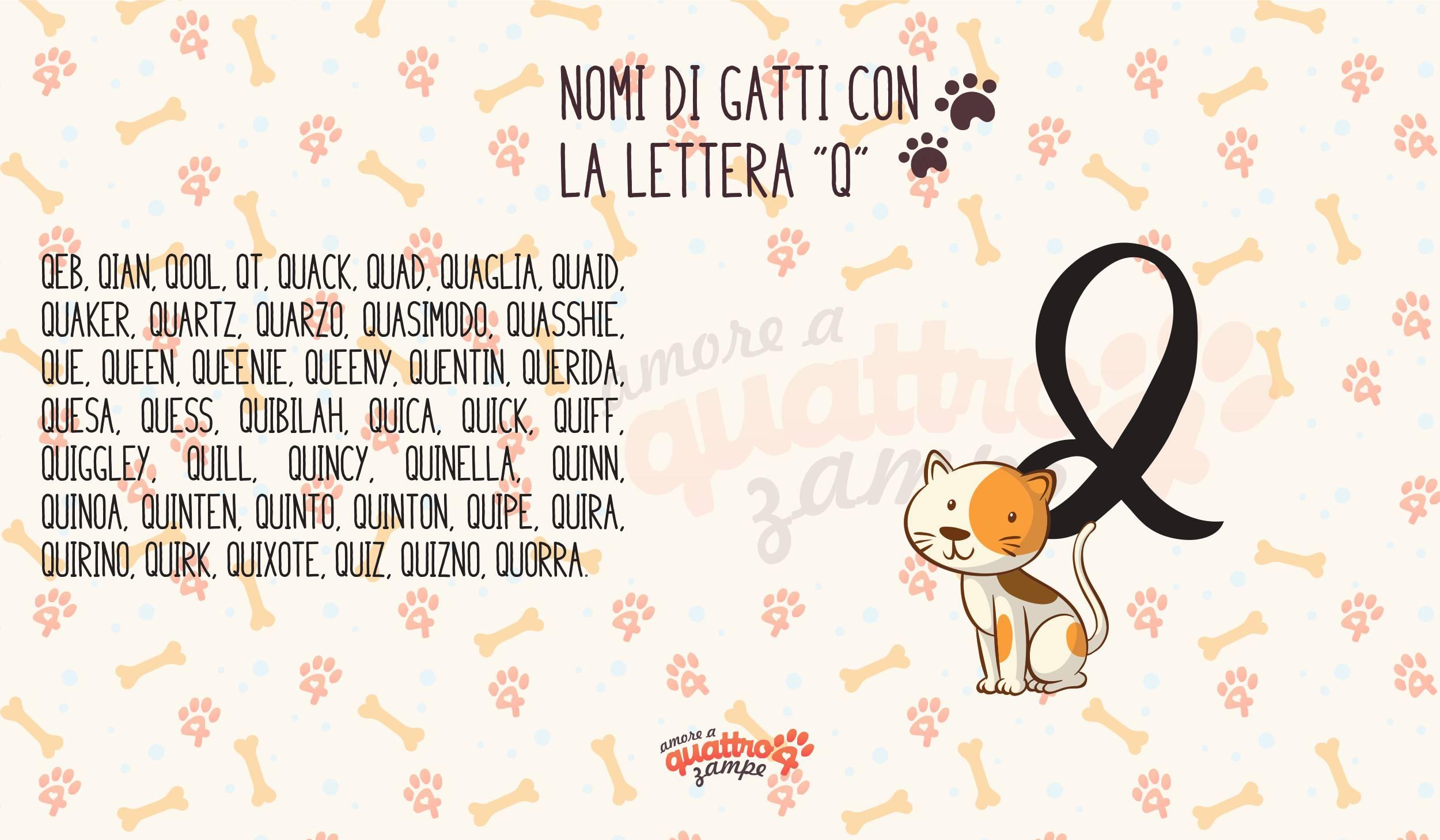 Infografica nomi gatti con la Q