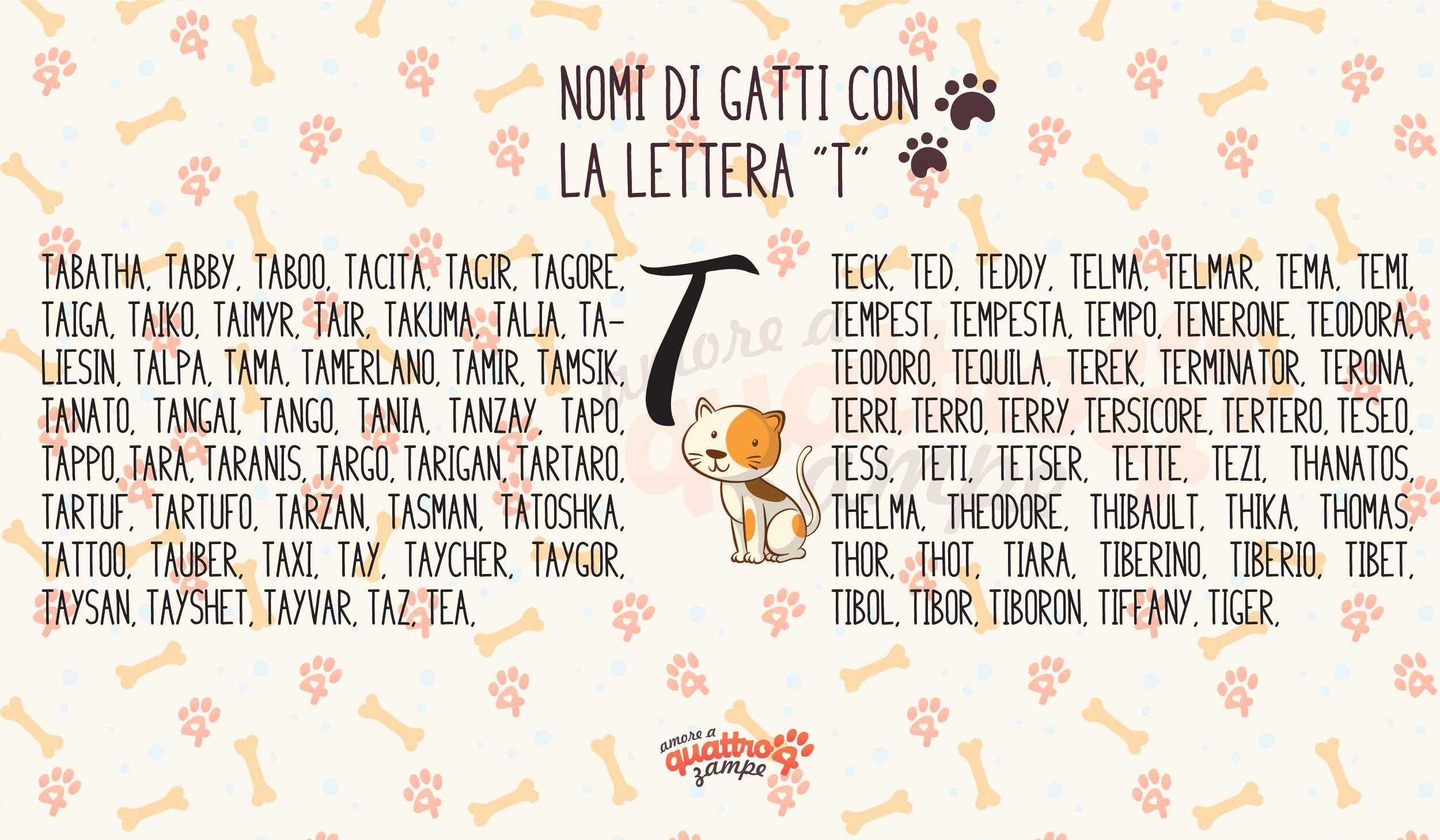Infografica nomi gatti con la T