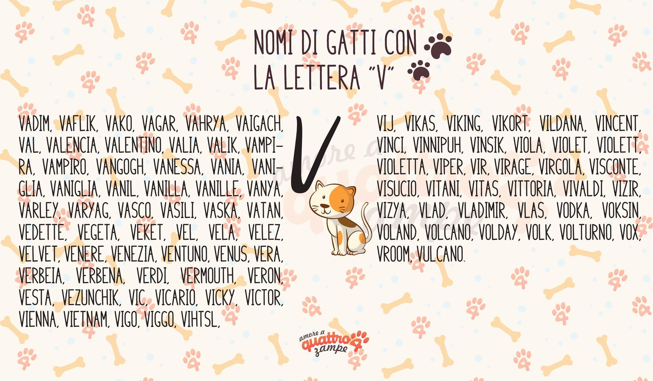 Infografica nomi gatti con la V