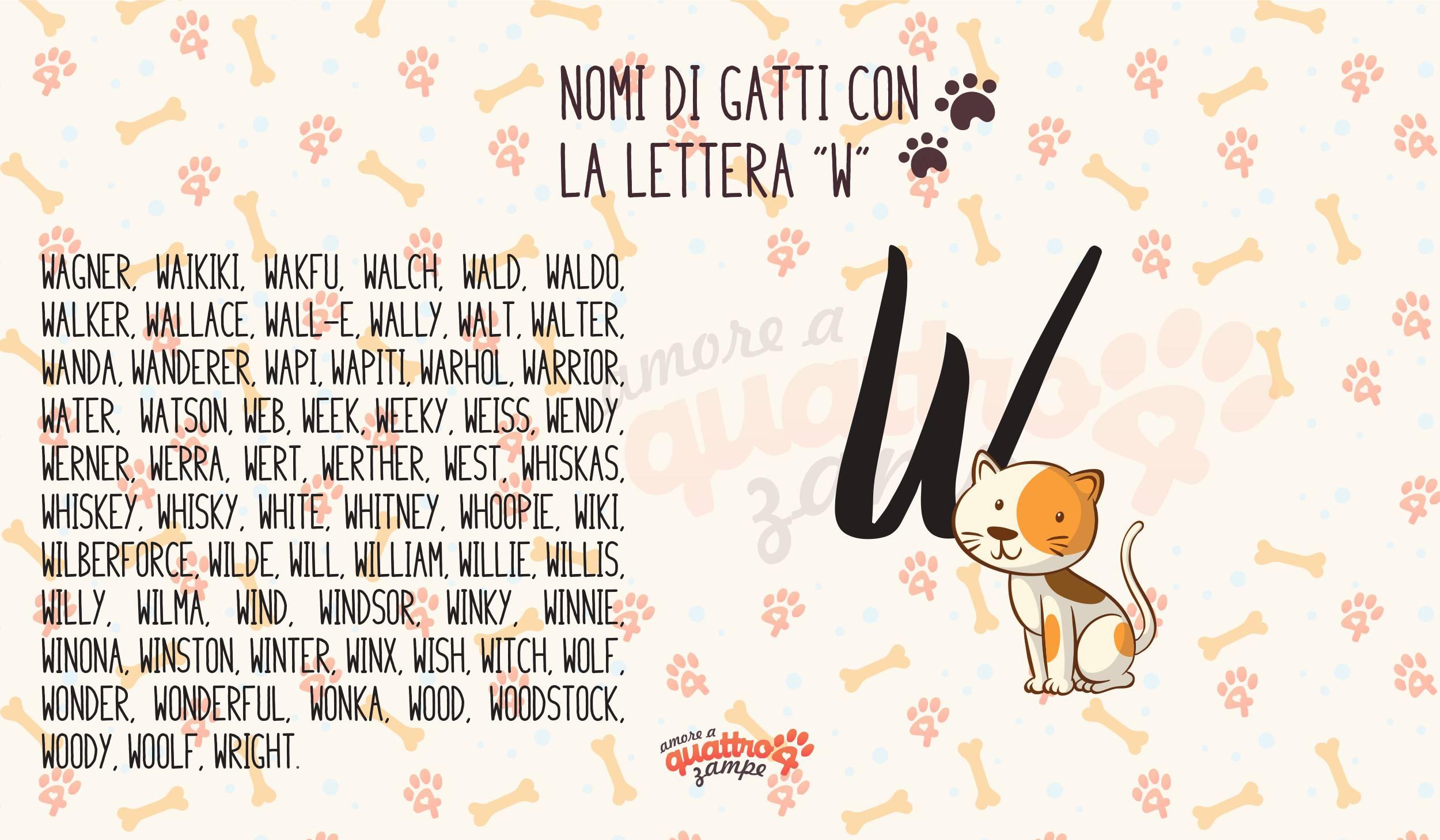 Infografica nomi gatti con la W