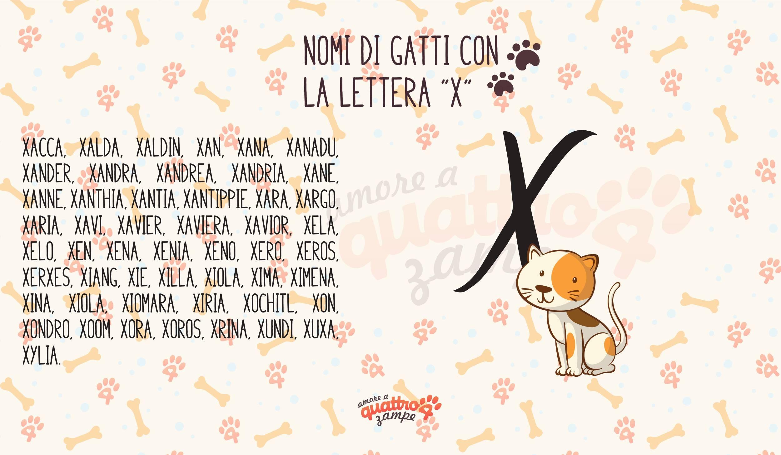 Infografica nomi gatti con la X
