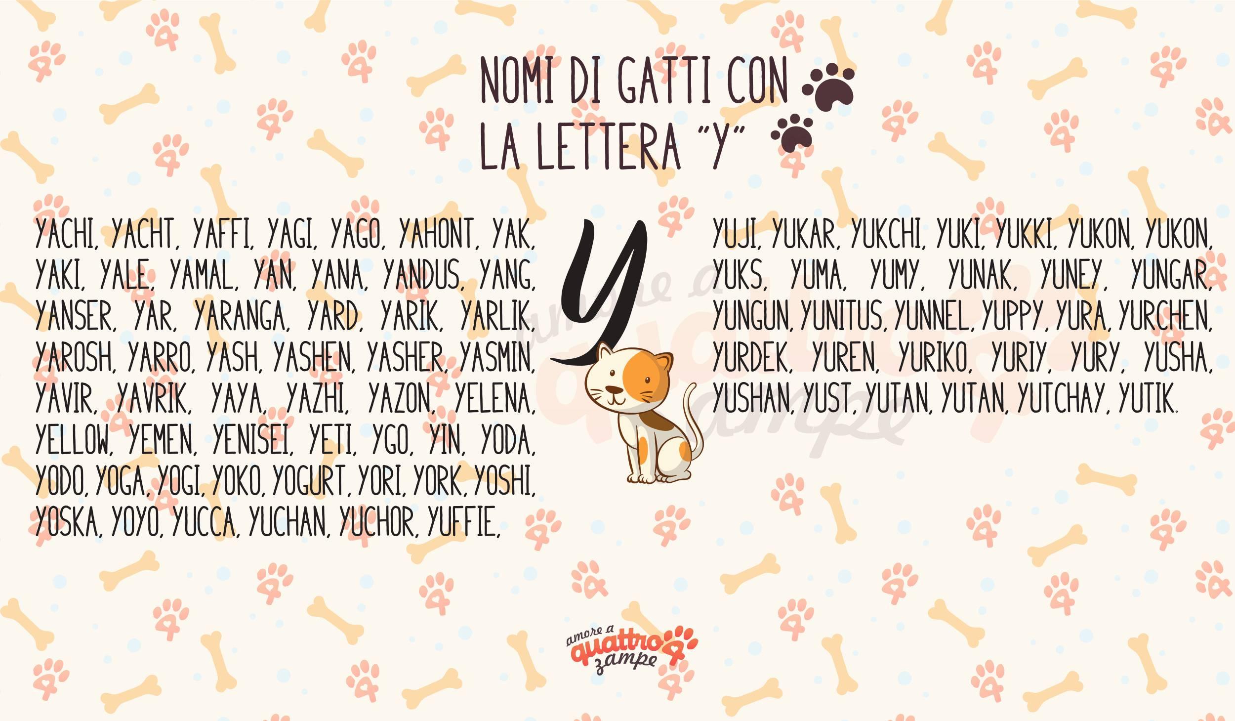 Infografica nomi gatti con la Y