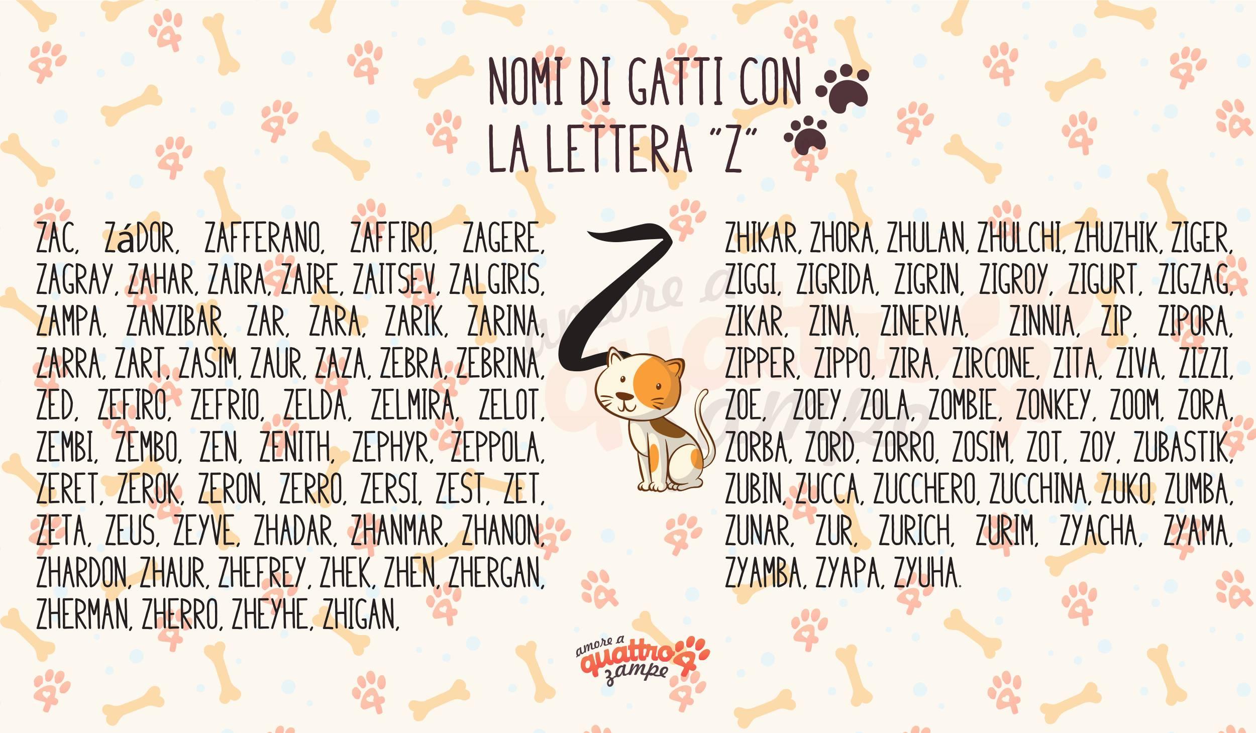 infografica gatti lettera Z