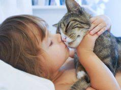 cosa puo insegnare un gatto ad un bambino